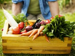 5-cosas-que-debes-saber-de-los-productos-organicos