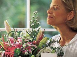 top-5-las-mejores-paginas-webs-para-enviar-flores