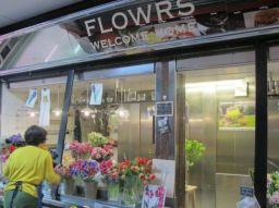 enviar-flores-las-5-mejores-floristerias-de-madrid